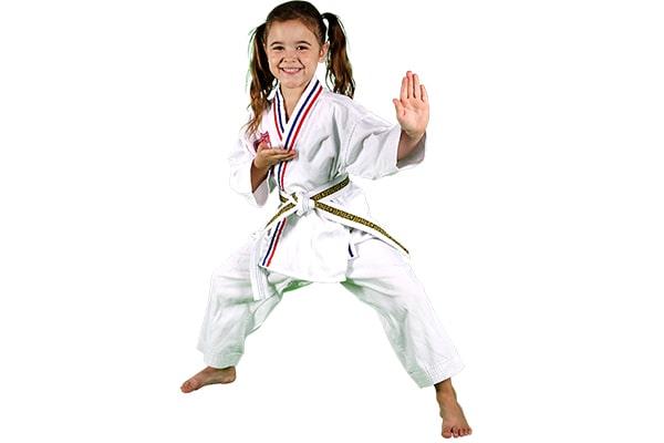 کاراته چیست؟