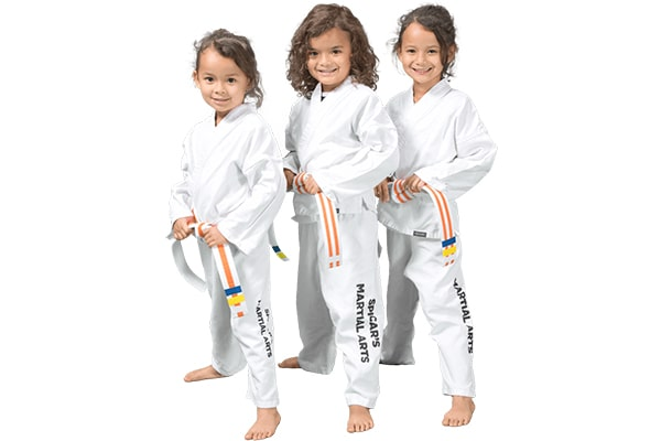انتخاب سبک کاراته