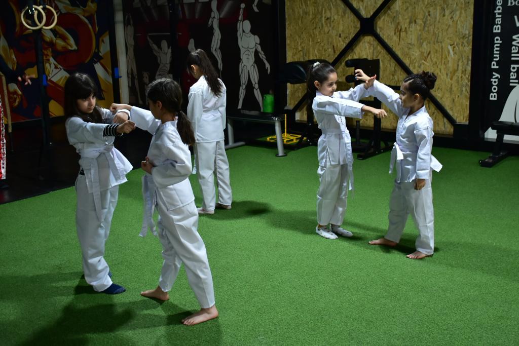 سبکهای دیگر کاراته