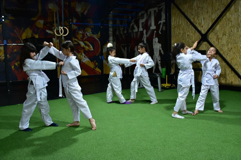 کاراته چند سبک دارد؟